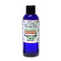 Hydrolat Eucalyptus Globulus BIO