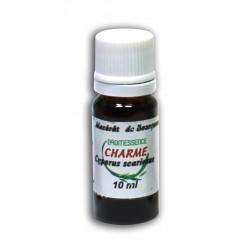 Macérât bio de bourgeons : Charme