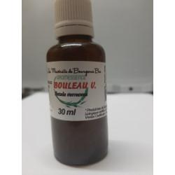 Macérât BIO de bourgeons : Bouleau Verruqueux D